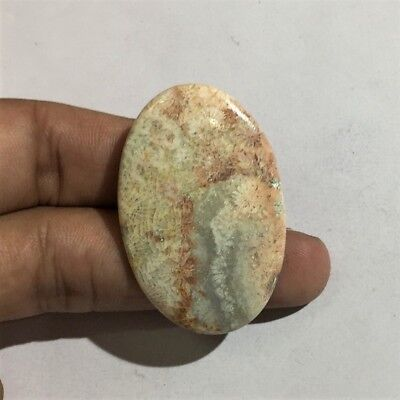 47.9 Cts 100% Natural Pink Fossil Coral Cab Top Quality Loose Gemstone L#946-41