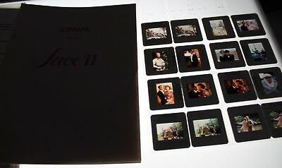 Lace Press Kit Vintage Lot Of 35Mm Slide Transparency Photo Phoebe Cates