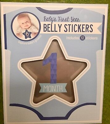 New Baby First Year Belly Stickers By Stepping Stones 12 Stickers
