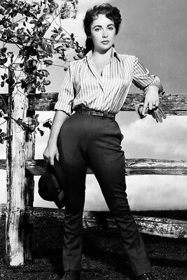 Elizabeth Taylor Giant Posing By Fence Iconic Large Poster