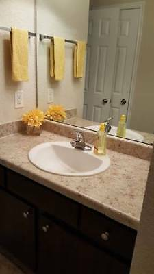 2 bedroom apartment home/ The Abbey at Jones Rd
