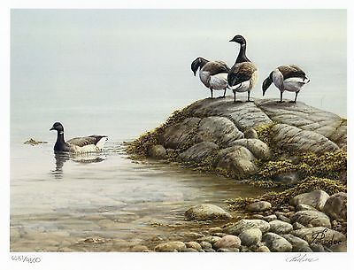 Canada Us 1985-2006 Complete Collection Of 22 Canada Limited Edition Duck Prints