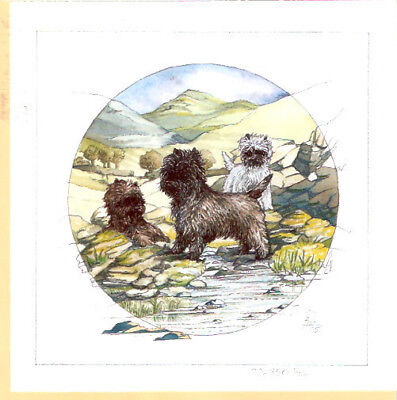 Cairn Terrier Limited Edition Art Print by UK Artist Barbara Hands Boz #76