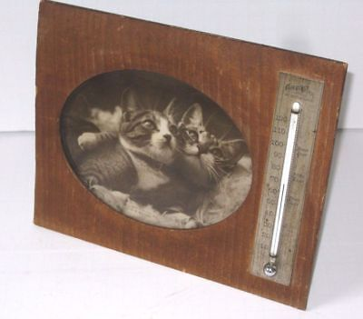 Antique Charles Wilder Peterborough NH  Thermometer Kitten Photograph Frame 1898