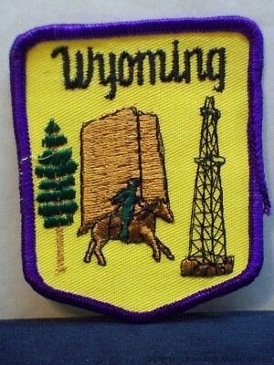 Vintage Wyoming Pony Express Oil Well Derrick Patch WY Souvenir Travel Badge