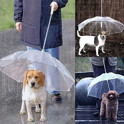 Pet Umbrella Built In Leash Dog Puppy Dry Walking Sleet Snow Rain Clear Plastic