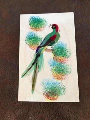 Vtg Parrot Picture from Mexico Made of Real Feathers Genuine From Greeting Card