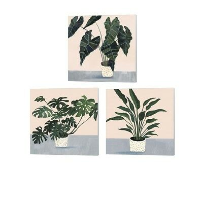 Victoria Borges 'Houseplant' Canvas Art (Set of 3)