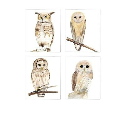Alicia Ludwig 'Hoo Dis' Canvas Art (Set of 4)