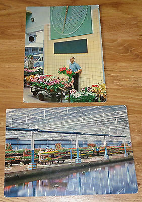 Two Vintage Postcards of The Flower Auction, Aalsmeer, Holland
