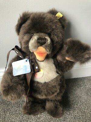 """Vintage Steiff  """"Minky Zotty"""" Bear Open Mouth 14"""" Tall Fully Jointed Mint All ID"""