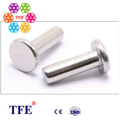 TFE 50 Pcs Stainless Steel 304/A2 Flat Head Rivets (DIN-109)