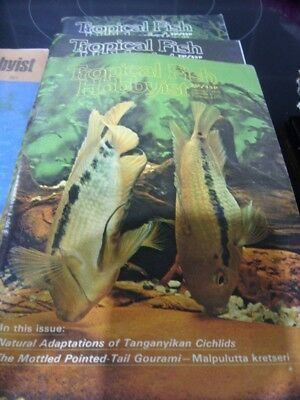 Tropical Fish Hobbyist Magazines-4 Magazines from 1978-Good Used Condition