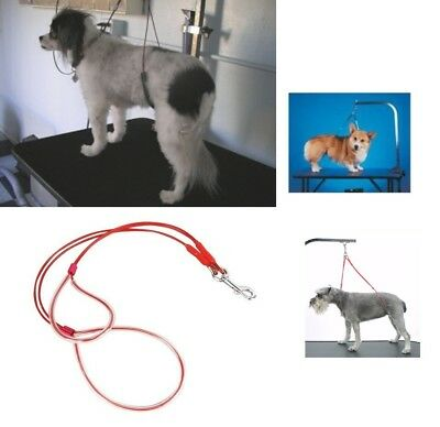 Classic LG NO SIT LIE DOWN Dog Grooming HEAVY DUTY BODY SUPPORT RESTRAINT System