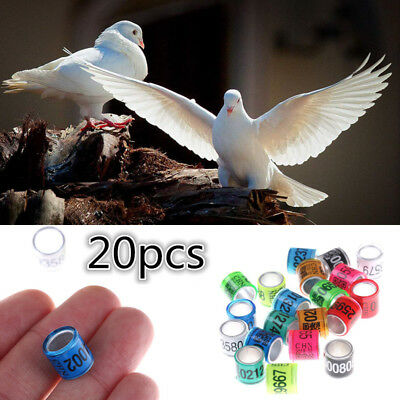 20PCS Bird Rings Leg Bands for Pigeon Parrot Finch Canary Hatch Poultry Rings