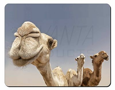 Camels Intrigued by Camera Computer Mouse Mat Christmas Gift Idea, CAM-1M