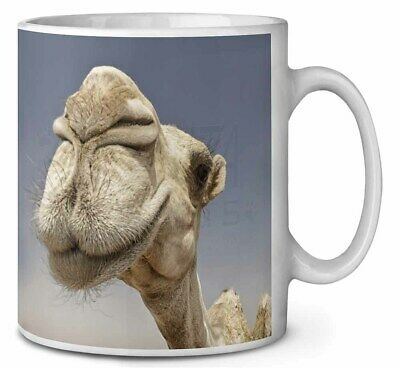Camels Intrigued by Camera Coffee/Tea Mug Christmas Stocking Filler Gif, CAM-1MG