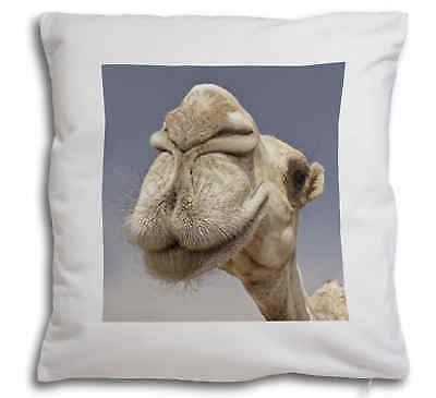 Camels Intrigued by Camera Soft Velvet Feel Cushion Cover With Inner , CAM-1-CPW