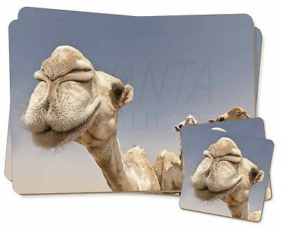 Camels Intrigued by Camera Twin 2x Placemats+2x Coasters Set in Gift Bo, CAM-1PC