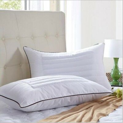 New Luxury Queen Size Buckwheat Soft Bed Pillows CORE Bedding Hotel Home CA