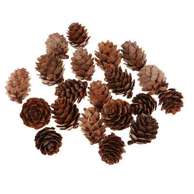 40x Natural Real Dries Pine Cones for Christmas Festivals Small Ornaments