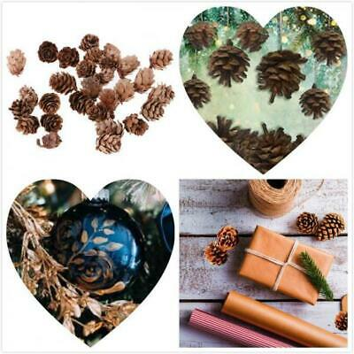 30pcs Decorative Pine Cones Retro Small Size for Photo Shooting Props Crafts