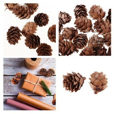 100 X Mini Natural Dried Pine Cones for Christmas Tree Hanging Decoration