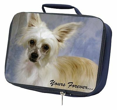 Chinese Crested Powder Puff Dog Navy Insulated School Lunch Box Bag, AD-CHC3yLBN
