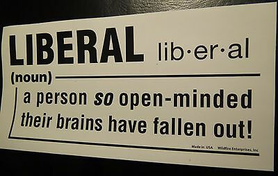 LOT OF 20 LIBERAL SO OPEN MINDED BRAINS FELL OUT STICKER Trump 2020 their fallen