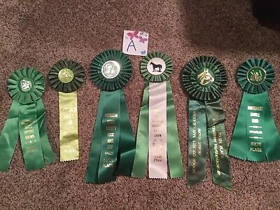 Lot of 6 Vintage Horse Show Ribbons ALL GREEN - Birthday Party pack - LOT A