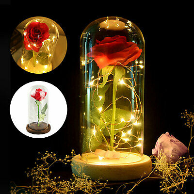 Beauty and The Beast Rose Decor LED Light Glass Dome Gift for Mothers' Day Her