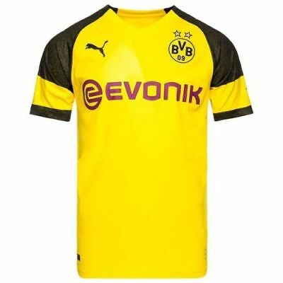 Borussia Dortmund Shirt, 2018/19, Home Football Jersey, All Sizes