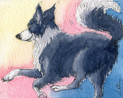 Border Collie dog pup orig ACEO painting sheepdog full of the joys Susan Alison
