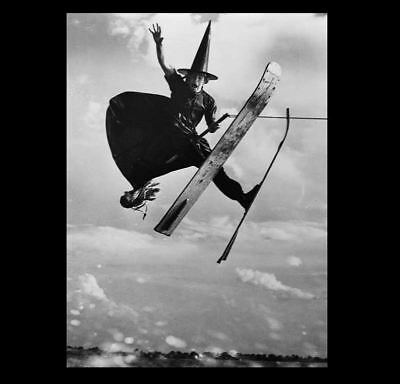 Water Skiing Witch PHOTO Crazy Mendoza Weird Costume Halloween Gag, Flor Champ