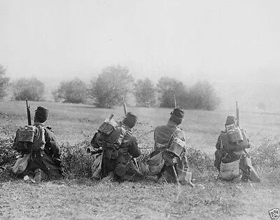 French troops using natural cover on the battlefield 1914 World War I 8x10 Photo