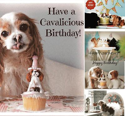 Set of 5 Happy Birthday Blank Cards and Stickers Cavalier King Charles Spaniel