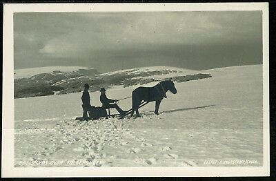 Early Ethnic Real Photo Postcard - Horse Skyds Over Folgefonden - Norway