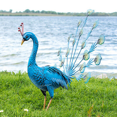 Large 55cm Exotic Blue Peacock Metal Garden Ornament Decorative Sculpture Statue