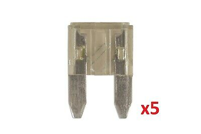 2Amp Mini Blade Fuse Pk 5 | Connect 36831