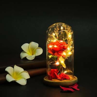Beauty Rose Beast Decor And The Lighted Enchanted Glass Dome LED Wedding Gift