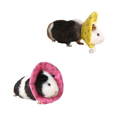 2Pcs Pet Elizabethan Collar Cone Collar for Cat Dog Hamster Guinea Pig M