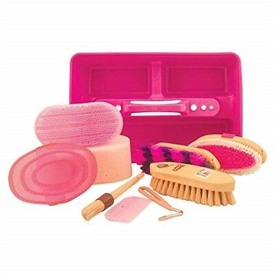 Lincoln Complete Grooming Kit - Pink
