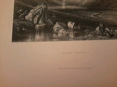 Loch Turit Scotland 1841 engraving w/Cows antique print Scottish view