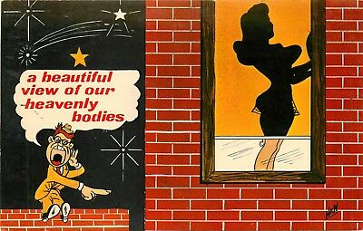"""Risque Comic Postcard. """"A Beautiful View Of Our Heavenly Bodies"""" Silhouette"""
