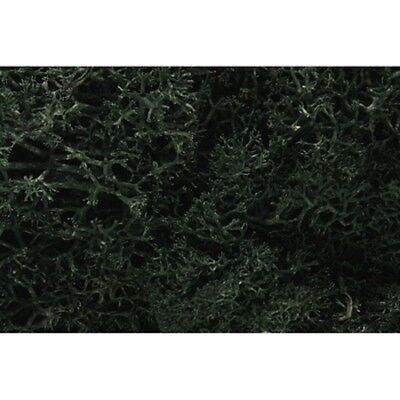 Woodland Scenics L164 Dark Green Lichen for Trees, Shrubs, Ground 1.5 quarts