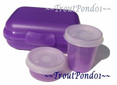 Tupperware Packables Hinged Container Oyster Box Midget Smidget Mini Bowl Purple