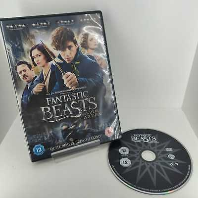 Fantastic Beasts And Where To Find Them - DVD - Fast and Free Delivery