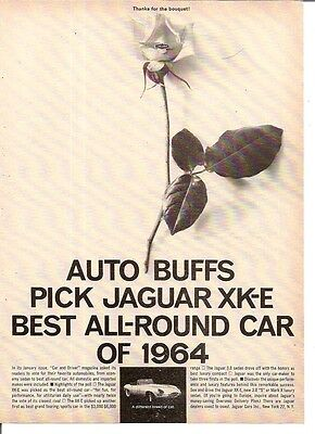 Jaguar XK-E (E Type) Best All Round Sports Car 1964 Vintage Advert
