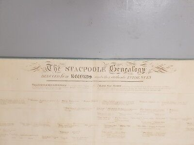 180 year old family tree. name Stacpoole