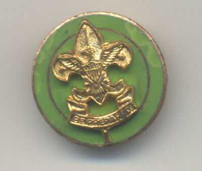 Vintage Boy Scout pin with hinged pin back that works